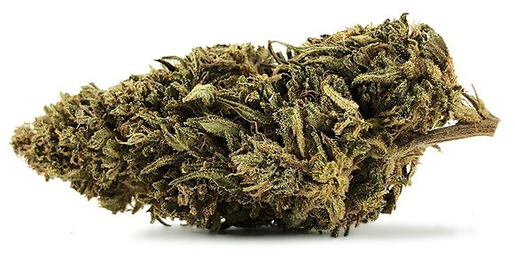 Cherry_Wine_CBD_Bud