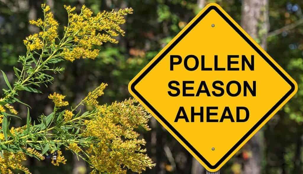 pollen season ahead warning sign