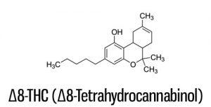 Delta 8 THC Molecular Breakdown